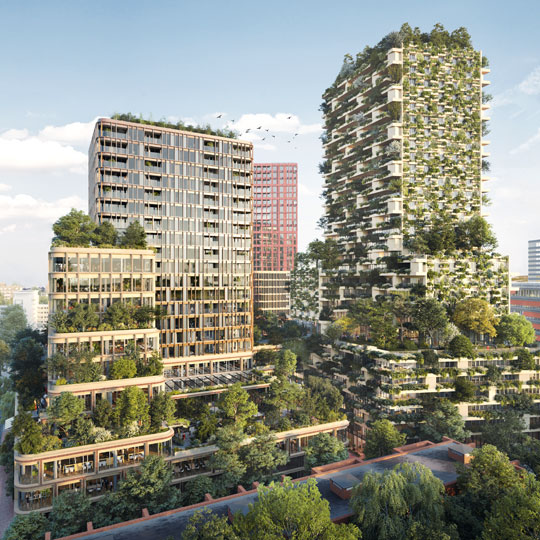 Wonderwoods brings nature back into the city.